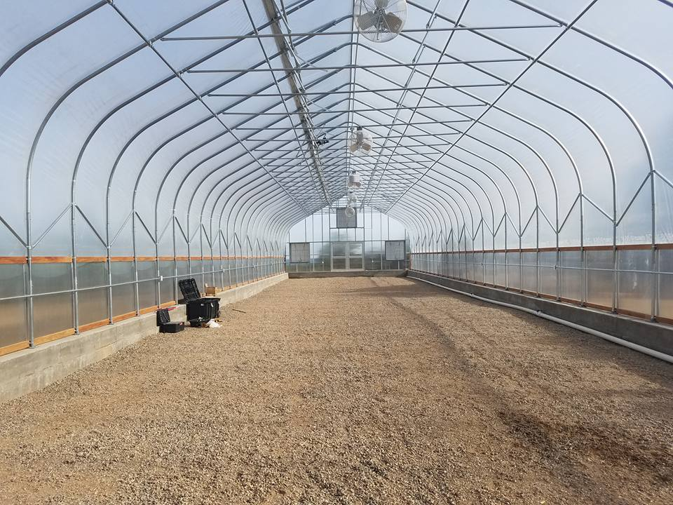 best-metal-greenhouse-design-and-construction-company-dothan-alabama-metal-buildings